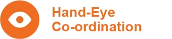Hand-Eye Co-Ordination