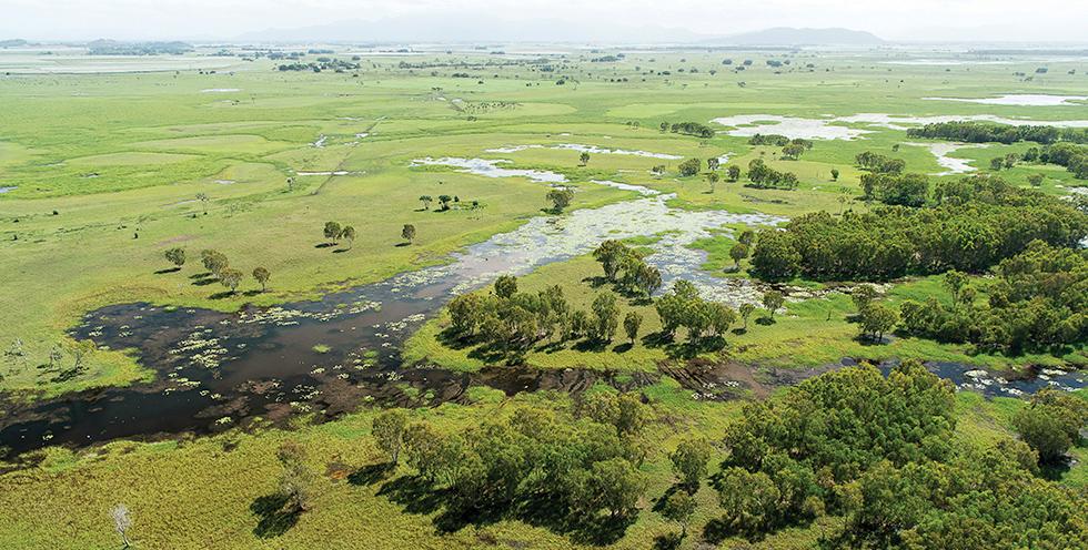 Queensland - Restoring Australia is helping restore wetlands near Mungalla Station