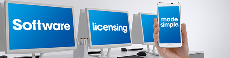 Business Software Licensing